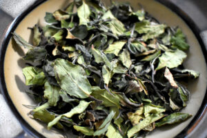 Streamstory is the finest white tea we have ever stocked. The leaves yield a beautiful floral quality that will leave you feeling refreshed and centered.